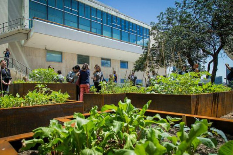 United Nations Food Garden Opening | © John Gillespie/Flickr