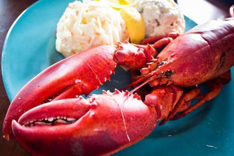 Lobster | © Benson Kua/WikiCommons