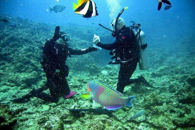 Scuba Diving | © Pixabay