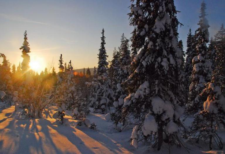 Lapland © Tania Ho/Flickr
