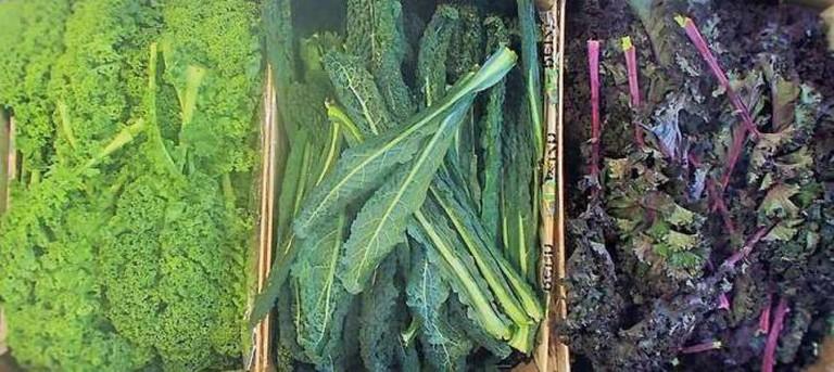 Kale stand at La Récolte