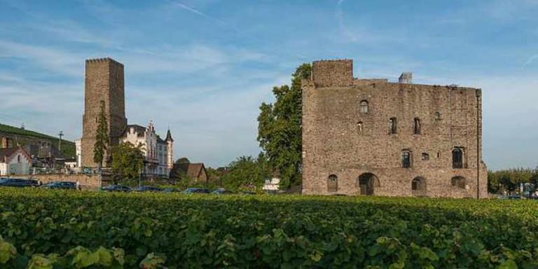 Brömserburg Castle | © DXR/WikiCommons