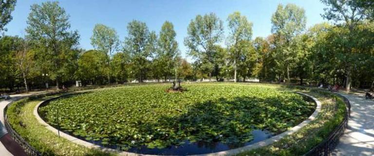 The Lily Lake of Knyaz-Borisova Gradina
