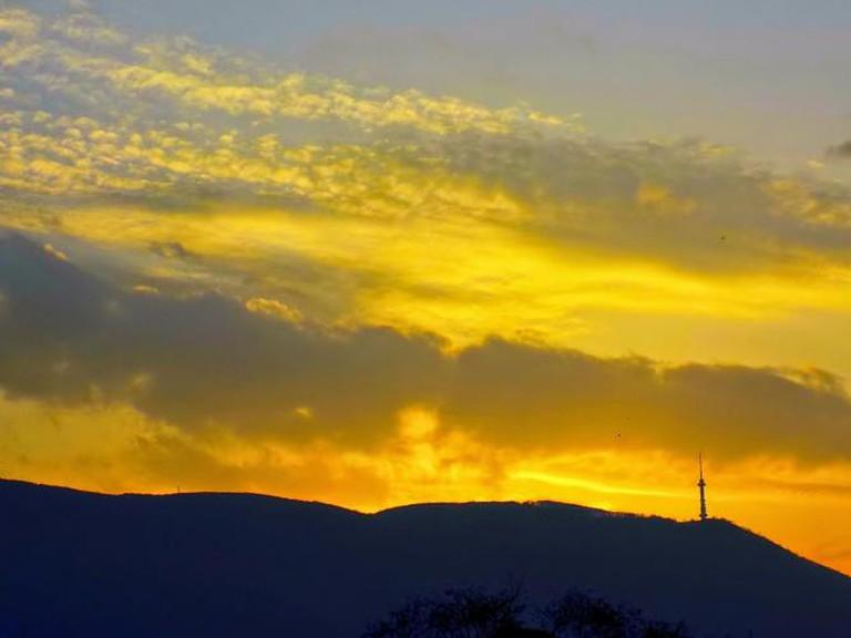 Golden sunset in Sofia I