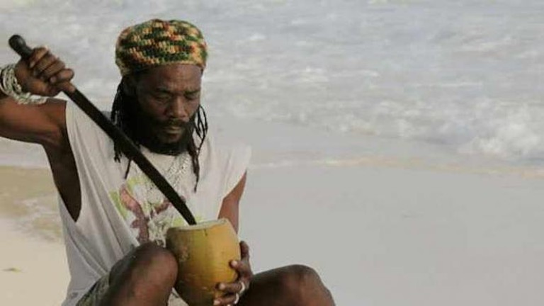 Rasta Jerry Coconut & Rum