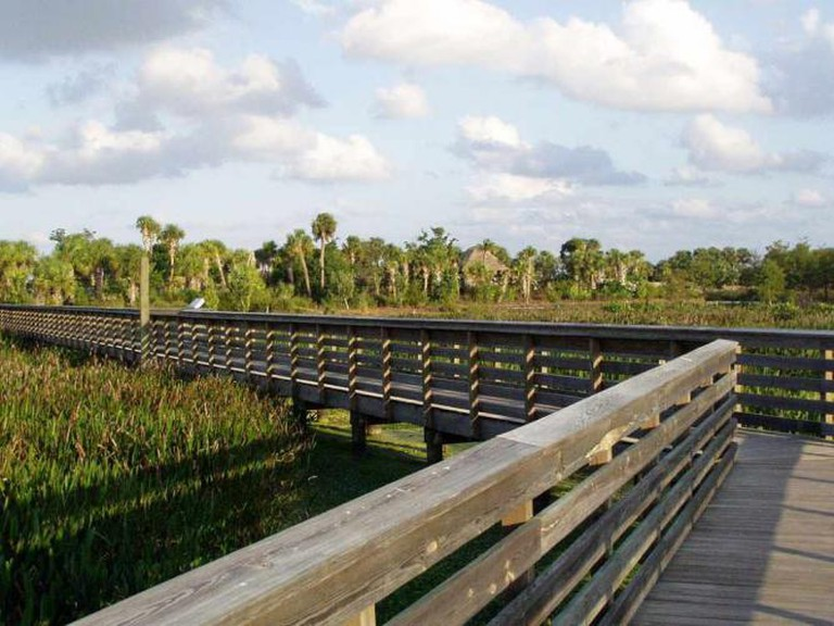Boardwalk at Green Cay Wetlands, Boynton Beach, Florida | © Johnskate17/WikiCommons