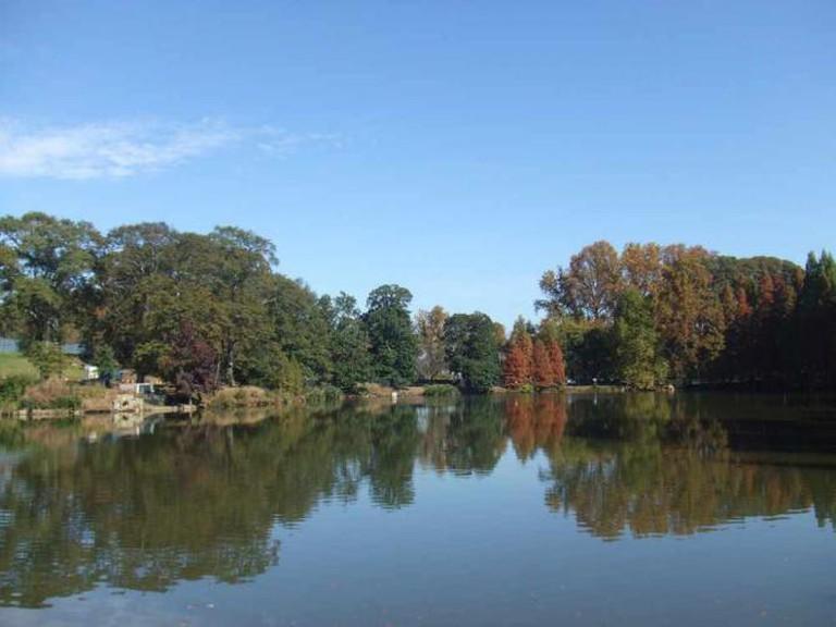 Piedmont Park   © Mort Guffman/Flickr