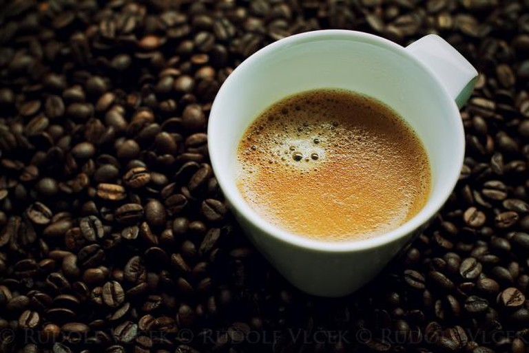 El Gato Negro Cafe