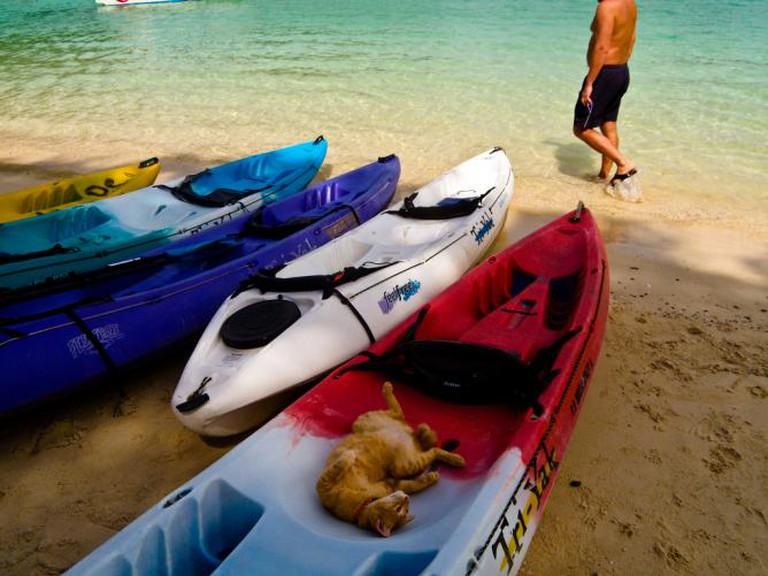Kayaks in Koh Phi Phi I