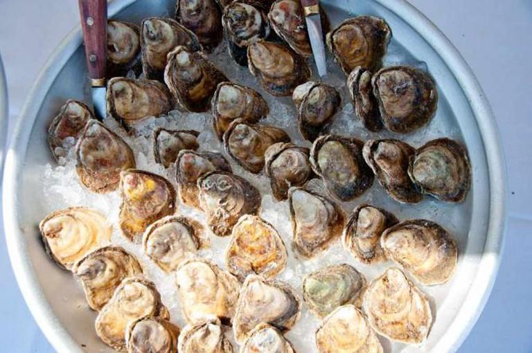 Fresh oysters ©L.C. Nøttaasen/Flickr