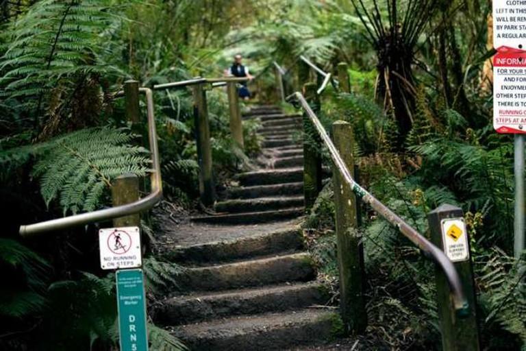1000 Steps / Kakoda Trail| Nicola Keane