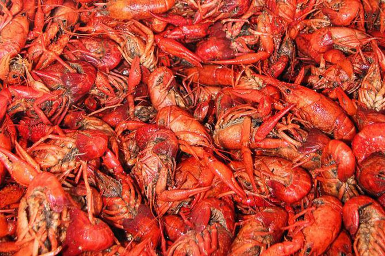 Delicious Crawfish | © Larry D. Moore CC BY-SA 3.0/WikiCommons