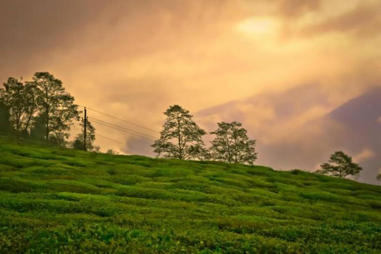 Sikkim Diaries | © Diptangshu Hazra VI