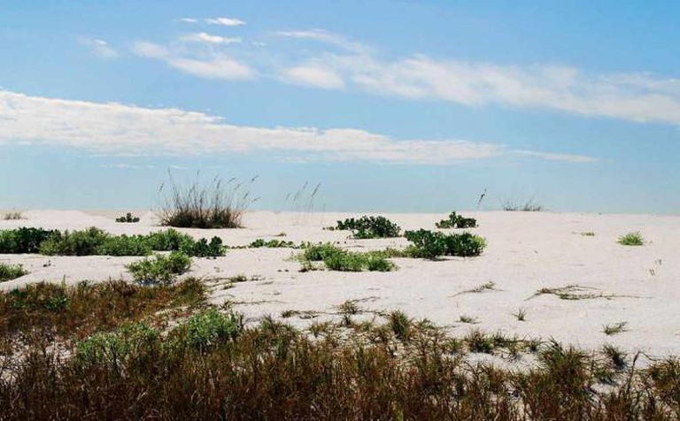 South End of Cayo Costa State Park, Florida