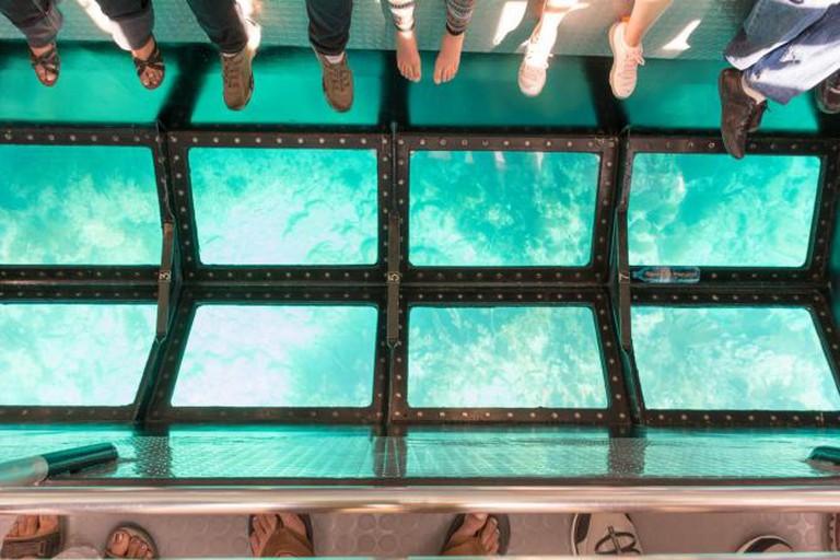 Glass bottom boat tour l