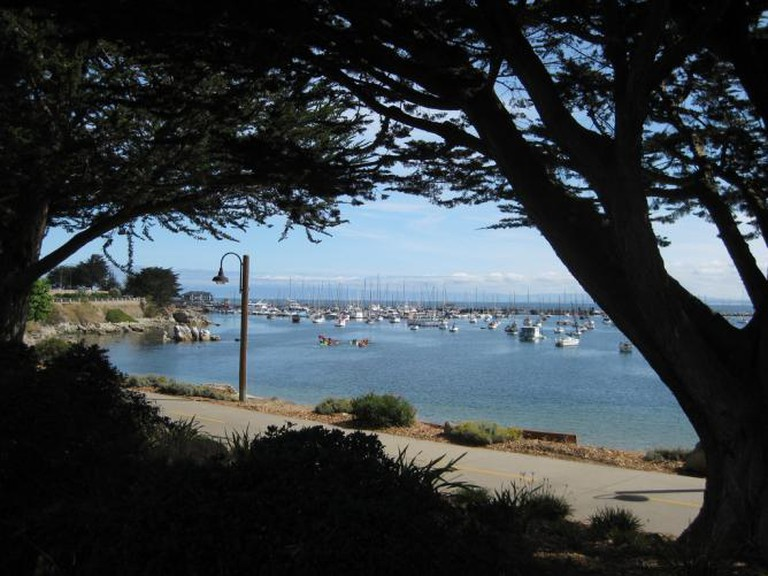 The trail at Monterey