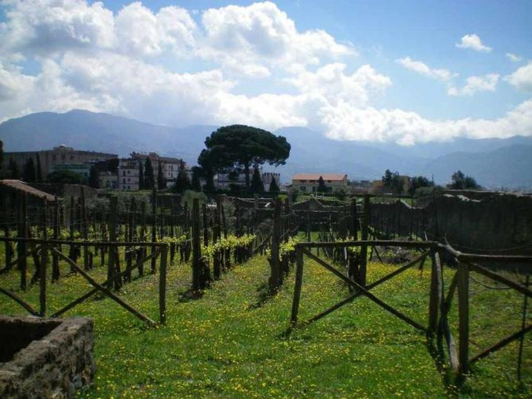 Pompeii | courtesy of author