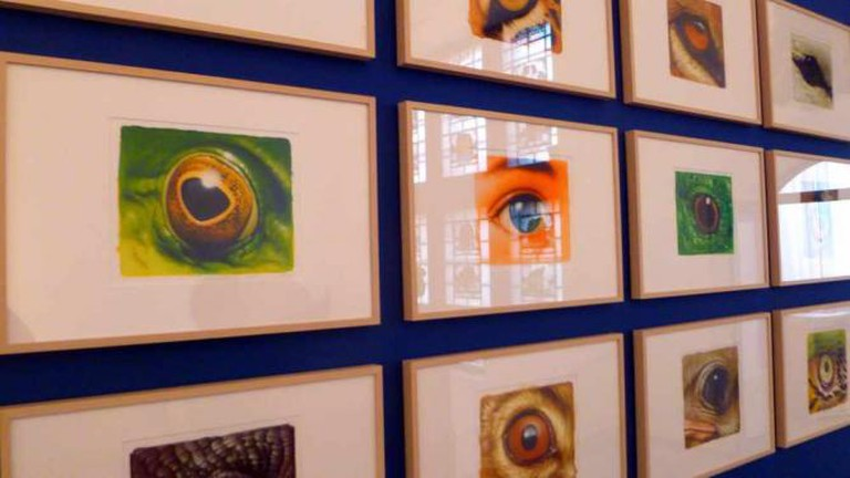 """Eyes"" by Dieter Weismuller at Altonaer Museum 
