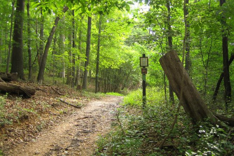Rock Creek Park | © TrailVoice/Flickr