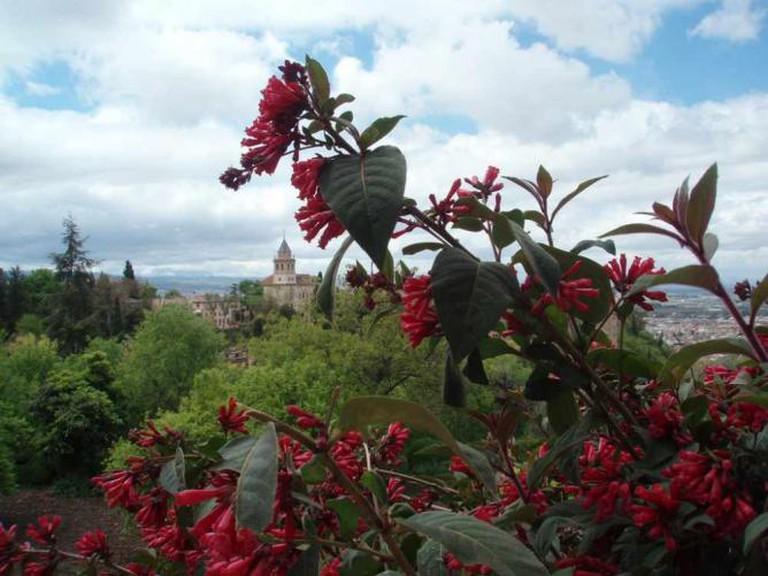 Alhambra, Granada | © sasha diamanti/Flickr