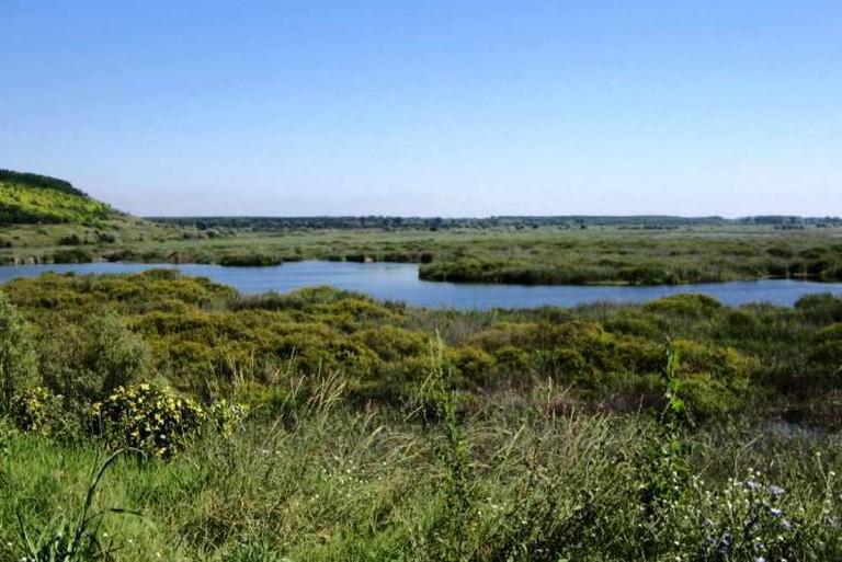 Srebarna Nature Reserve © Mincov/Wikicommons
