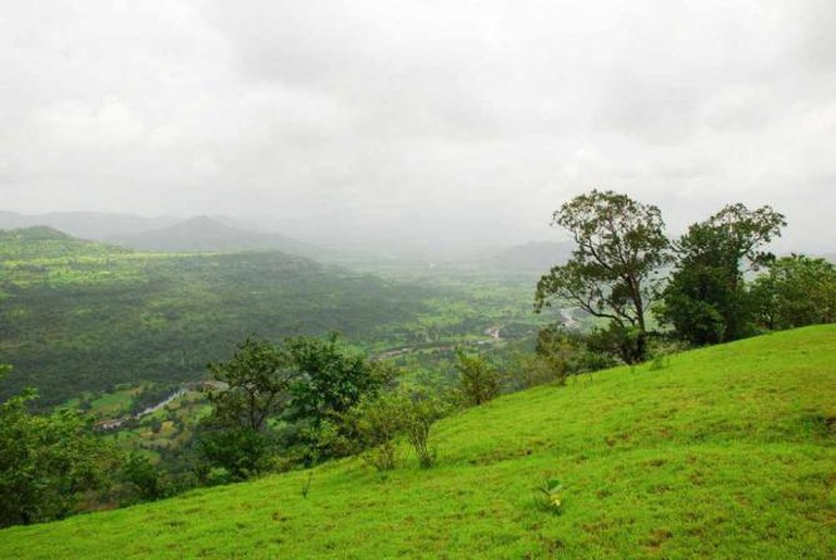 Lush Greenery at Rajmachi