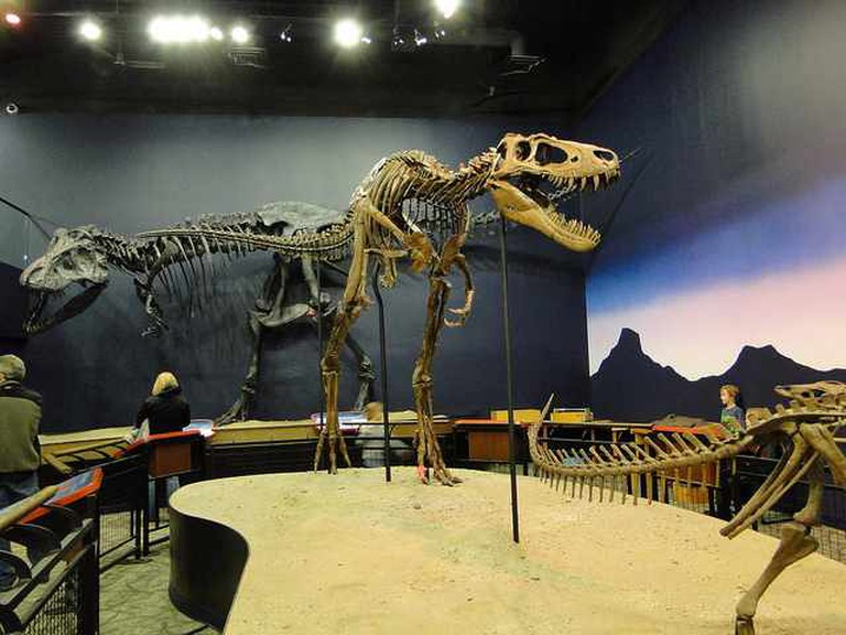 Dinosaur exhibit | © Amy Meredith/Flickr