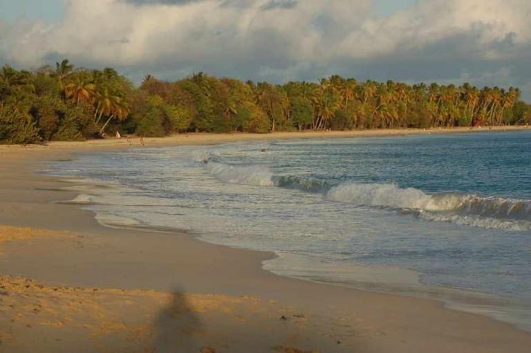 Anse des Salines – Martinique