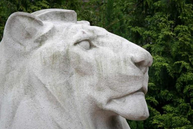 George Square Lion | © /Flickr&p>