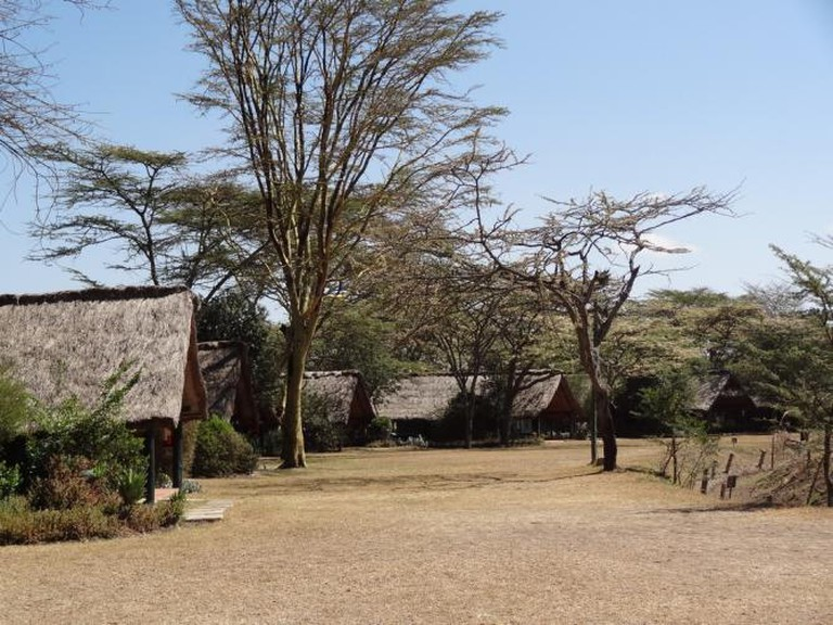Sweetwater Camp at Ol Pejeta Conservancy | © kathrynbullock/Flickr
