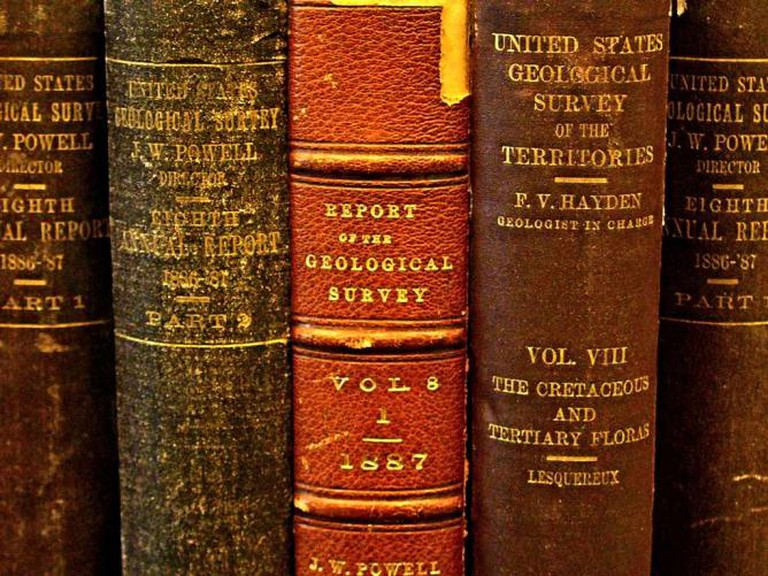 Old leather-bound books like the rarities sold at the Printed Page bookshop.