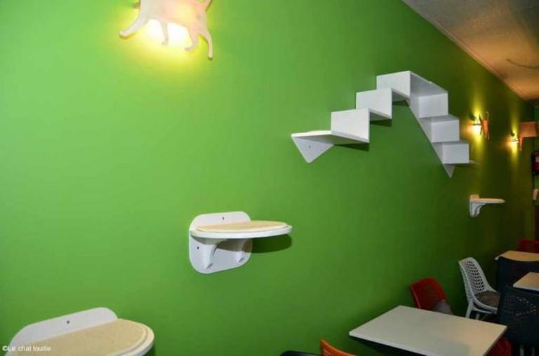 A café fit for a cat - Courtesy of Le Chat Touille