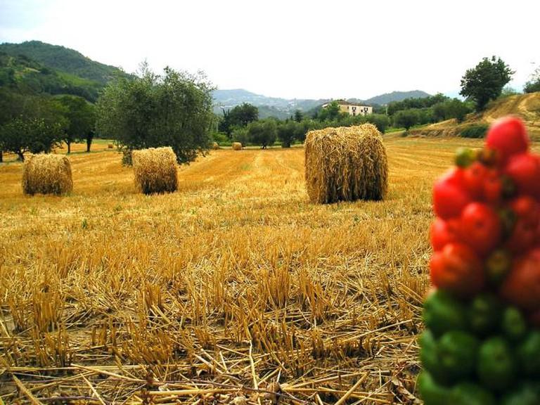 Abruzzo I © Roberto La Forgia/Flickr