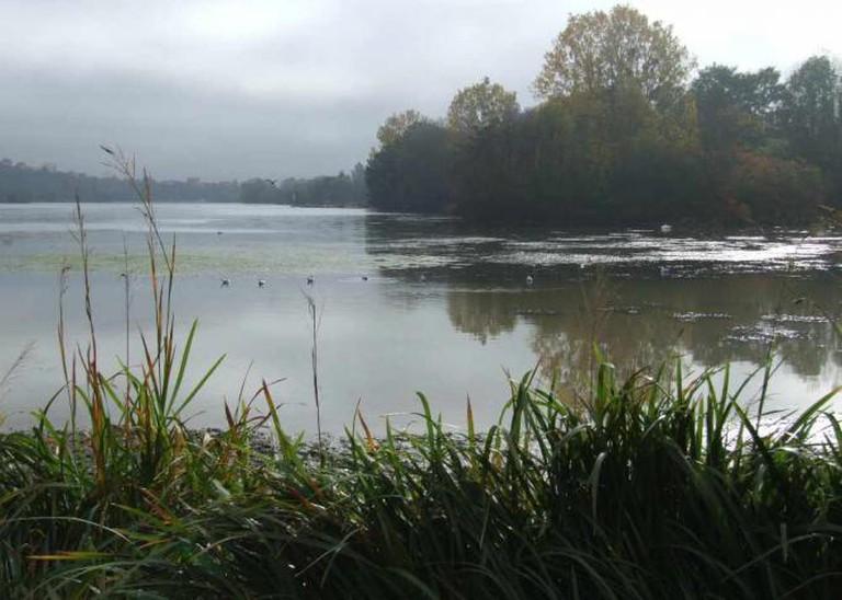 Dijon Lac Kir