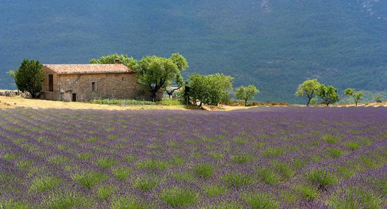 'A mas', in the Occitan language, means a traditional farmhouse found in the Provence regionI © Jialiang Gao/Wikicommons