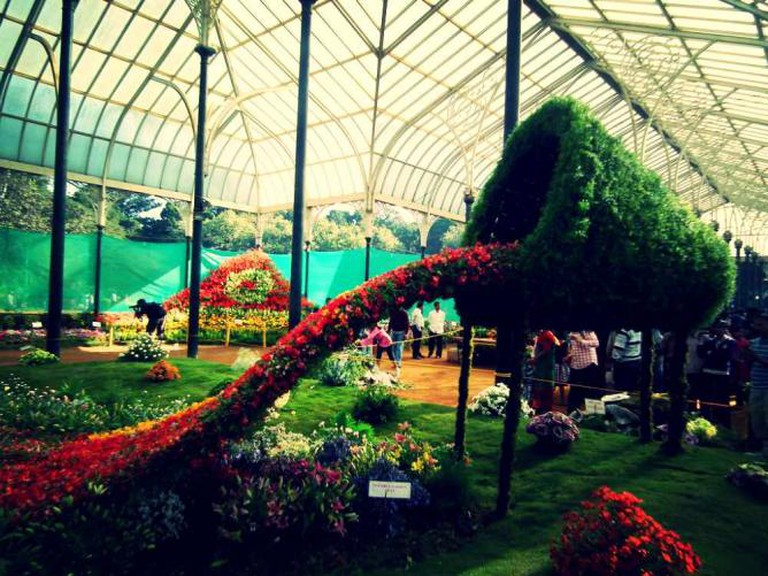 Lal Bagh Glass Room Show