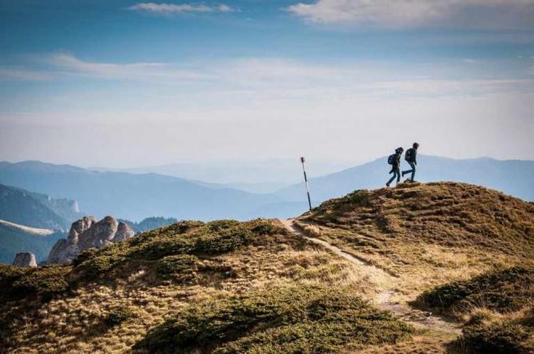 Hill, Trekking, Greenery