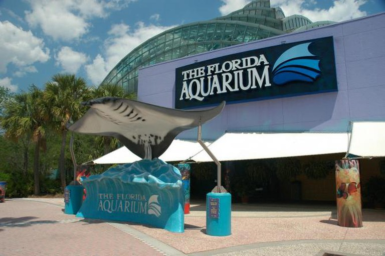 The Florida Aquarium l