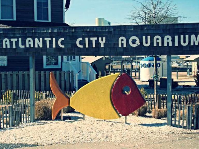 The outside of the Atlantic City Aquarium.