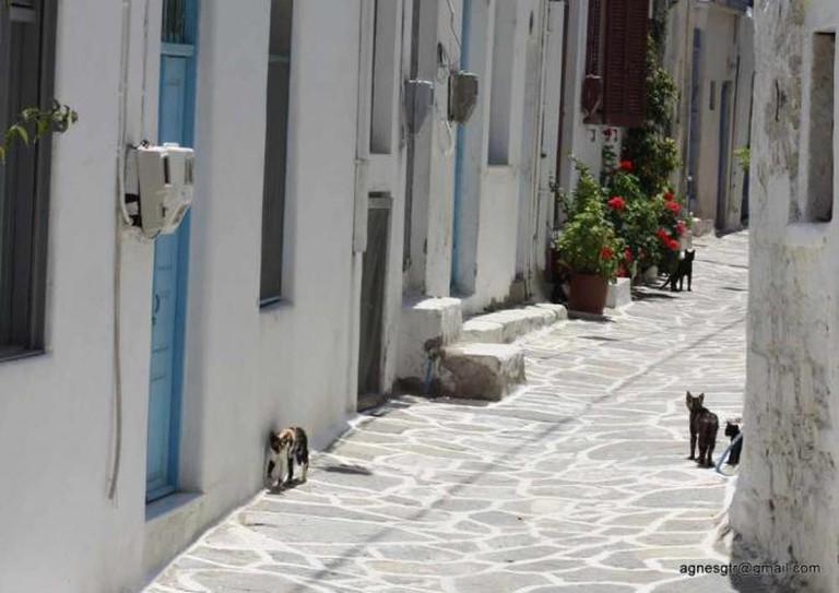 Alley in Paros