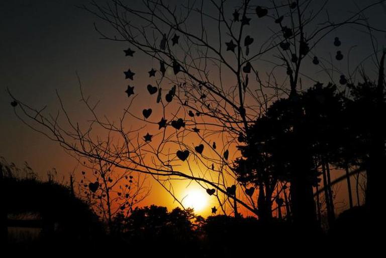 Mirror Tree at Pyeonghwa Park, Seoul I © travel oriented/Flickr