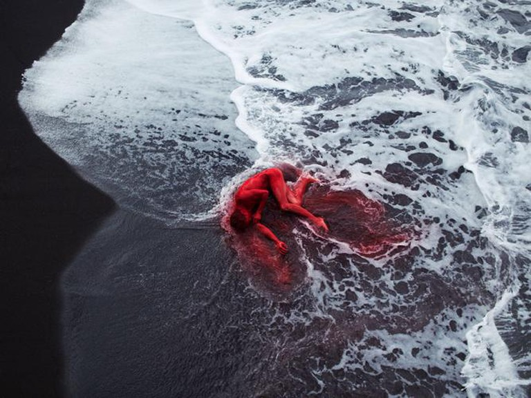 Eike, 2013 | © Bertil Nilsson