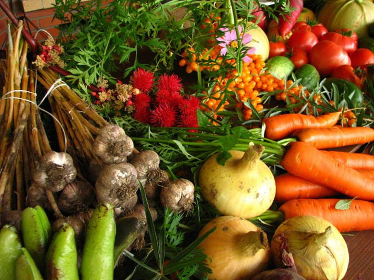 Ecologically grown vegetables | © Elina Mark/Wikimedia Commons