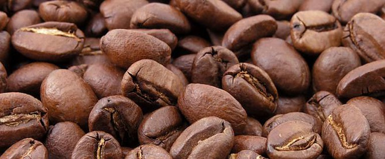 Coffee Beans Burundi