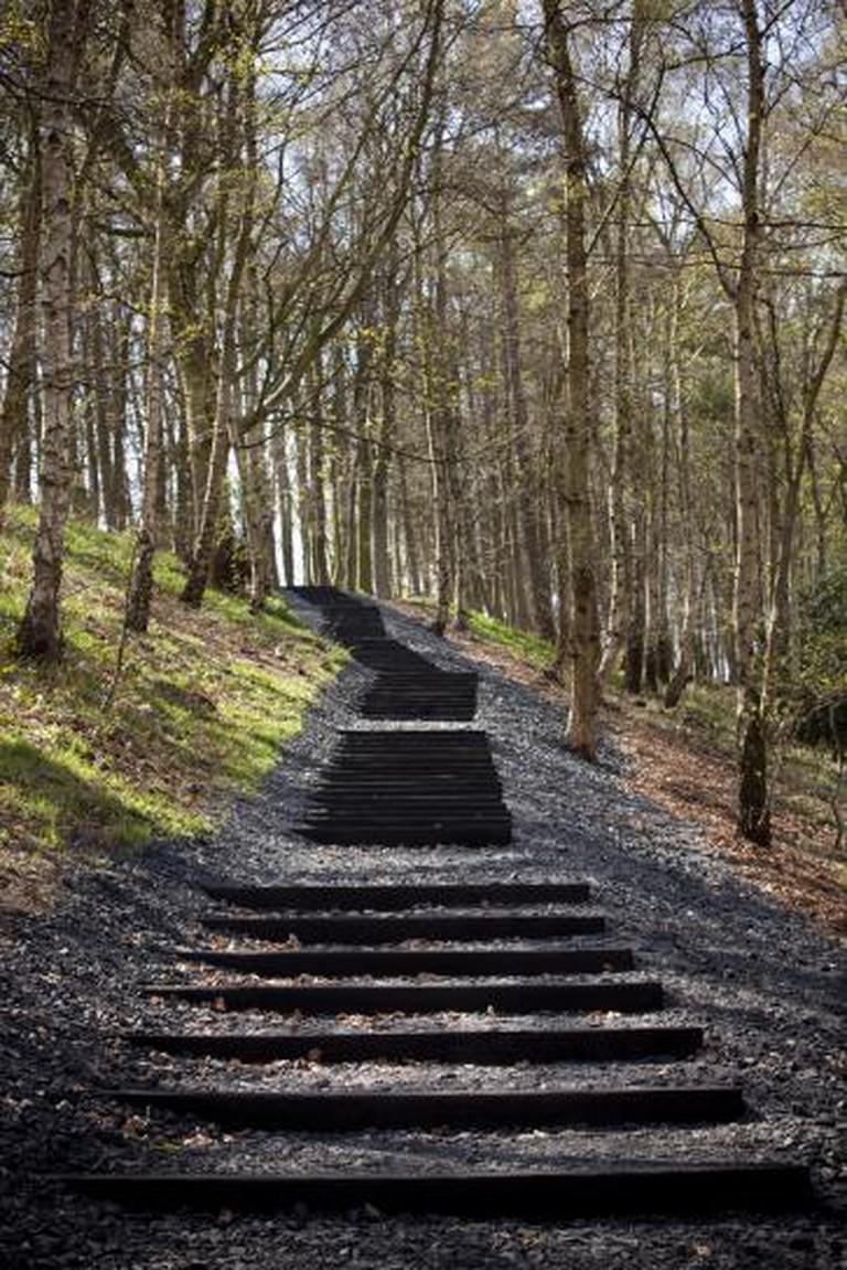 David Nash, Seventy-one Steps, 2010