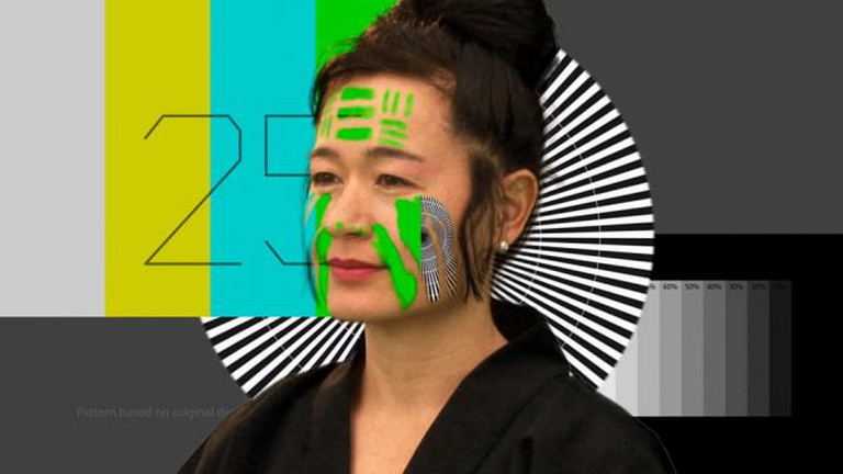 Hito Steyerl, 'How Not to Be Seen. A Fucking Didactic Educational .Mov File'