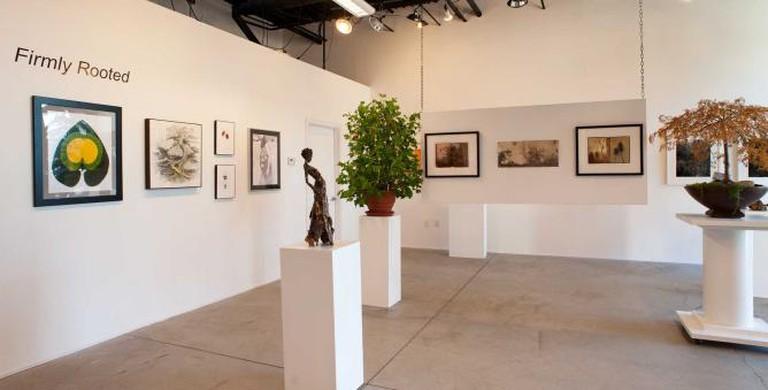 MS Rezny Studio and Gallery
