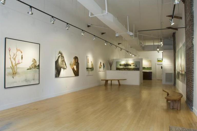 Rebekha Jacob Gallery