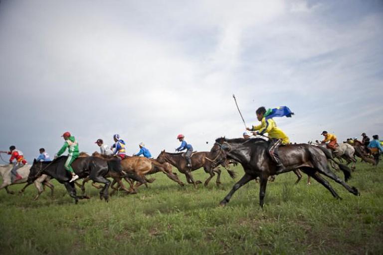 Nadaam Horse Race