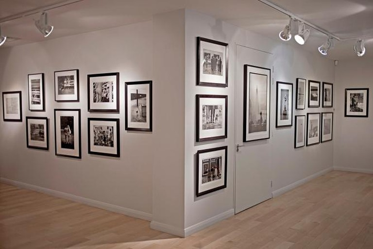 Beetles and Huxley Gallery